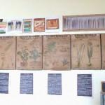 Affiches salle de classe 2